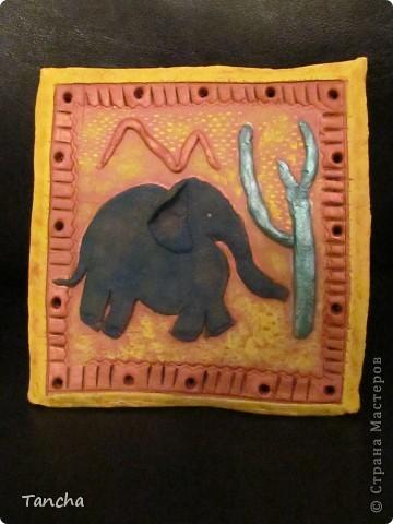 Слоник в пустыне