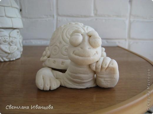 Вот такая черепашка у меня теперь живёт. Спасибо Юлии Русаковой http://stranamasterov.ru/node/55420 фото 1