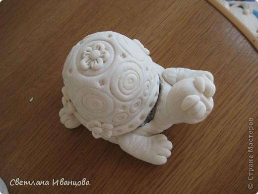 Вот такая черепашка у меня теперь живёт. Спасибо Юлии Русаковой http://stranamasterov.ru/node/55420 фото 3