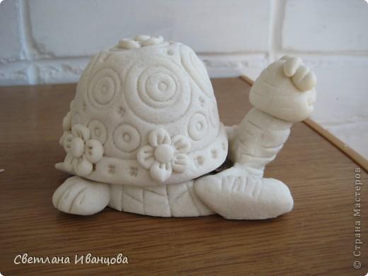 Вот такая черепашка у меня теперь живёт. Спасибо Юлии Русаковой http://stranamasterov.ru/node/55420 фото 4