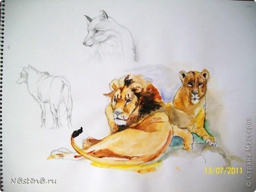Ну конечно же, это не картина!! так зарисовочки на тему дикой природы: семейная пара  - львы. На заднем фоне лисы.