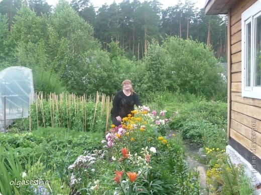Приглашаю всех любителей природы присоедениться к путешествию по уральскому саду  фото 2