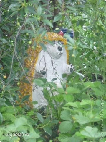Приглашаю всех любителей природы присоедениться к путешествию по уральскому саду  фото 5
