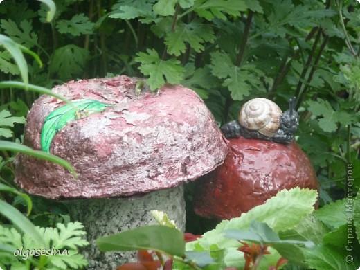 Приглашаю всех любителей природы присоедениться к путешествию по уральскому саду  фото 26