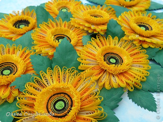 Цветок, который разбудило солнце фото 4