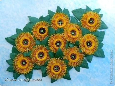 Цветок, который разбудило солнце фото 2