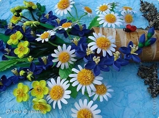 Насобирала на этот раз я букет из луговых цветов. фото 4