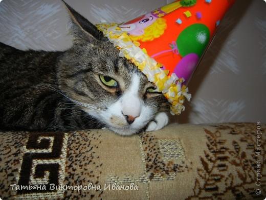 Жила-была в деревне кошка Лапка. В один прекрасный августовский день 2003 года она произвела на свет очень милого и красивого котёнка. По неволе судьбы котёнок переехал жить в город. Он попал в очень дружную и крепкую семью. Имя ему дали самое обыкновенное - Филька! фото 20