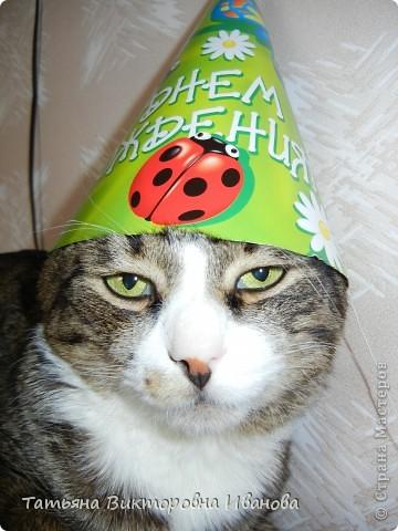 Жила-была в деревне кошка Лапка. В один прекрасный августовский день 2003 года она произвела на свет очень милого и красивого котёнка. По неволе судьбы котёнок переехал жить в город. Он попал в очень дружную и крепкую семью. Имя ему дали самое обыкновенное - Филька! фото 21