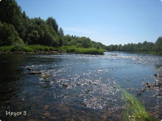 Лето 2011 года . Река Кема . фото 3