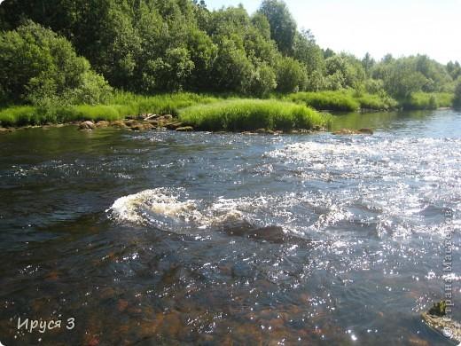 Лето 2011 года . Река Кема . фото 4