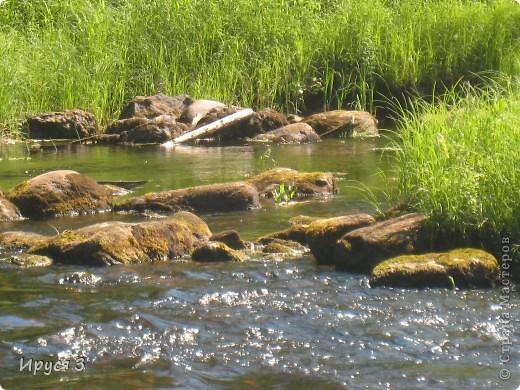 Лето 2011 года . Река Кема . фото 5
