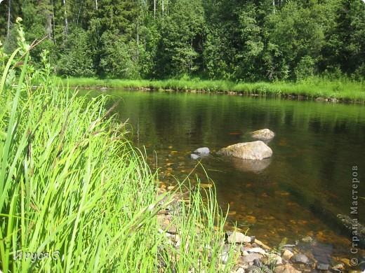 Лето 2011 года . Река Кема . фото 9