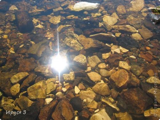 Лето 2011 года . Река Кема . фото 10