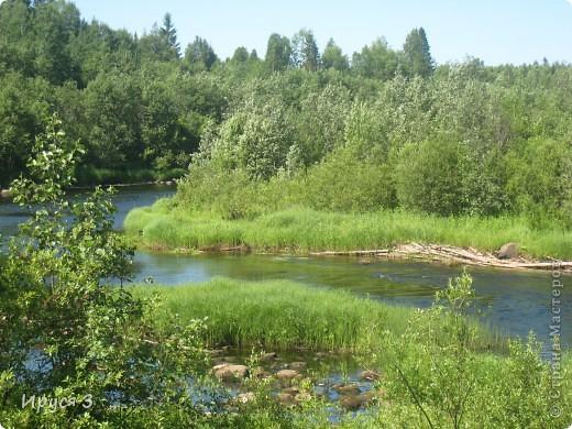 Лето 2011 года . Река Кема . фото 12