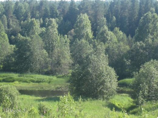 Лето 2011 года . Река Кема . фото 13