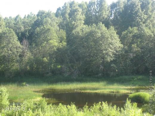 Лето 2011 года . Река Кема . фото 15