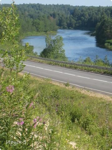 Лето 2011 года . Река Кема . фото 16