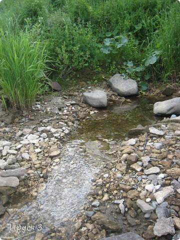 Лето 2011 года . Река Кема . фото 24