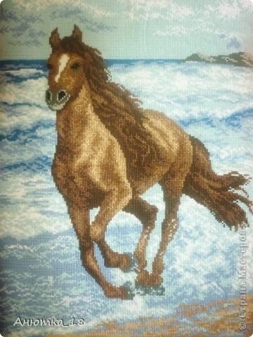 Я всегда мечтала вышить лошадь - это грациозное создание природы, вызывающее восхищение. И наконец, благодаря моей маме, которая подарила мне этот набор для вышивания, моя мечта осуществилась! фото 1