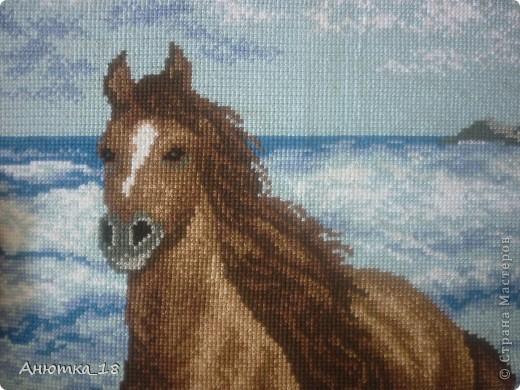 Я всегда мечтала вышить лошадь - это грациозное создание природы, вызывающее восхищение. И наконец, благодаря моей маме, которая подарила мне этот набор для вышивания, моя мечта осуществилась! фото 2