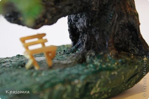 Решила я устроить фотосессию для своих деревьев. Это мои любимчики.  фото 23