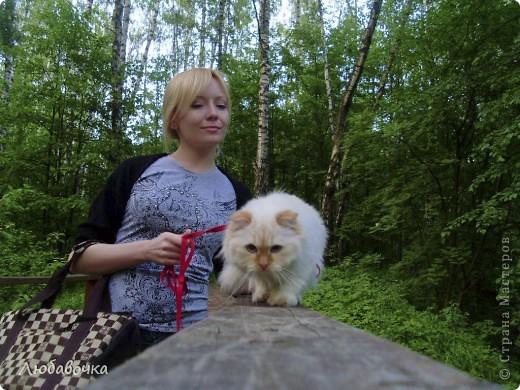 Прогулки в лесу с моей киской-Анфиской)) фото 6