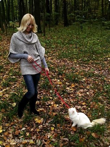 Прогулки в лесу с моей киской-Анфиской)) фото 12