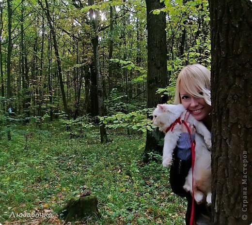 Прогулки в лесу с моей киской-Анфиской)) фото 11