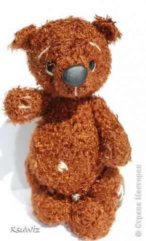 Доброе время суток! Под впечатлением от медвежат Евгении Аксеновой (http://bearsforpeople.blogspot.com) связался такой вот сладкоежка =) фото 2