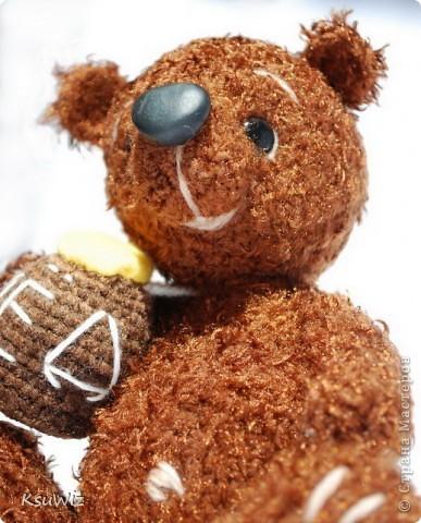 Доброе время суток! Под впечатлением от медвежат Евгении Аксеновой (http://bearsforpeople.blogspot.com) связался такой вот сладкоежка =) фото 4