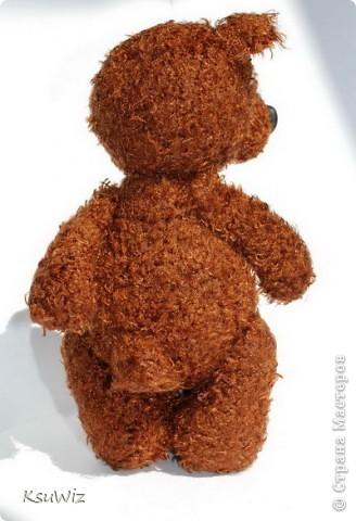 Доброе время суток! Под впечатлением от медвежат Евгении Аксеновой (http://bearsforpeople.blogspot.com) связался такой вот сладкоежка =) фото 5