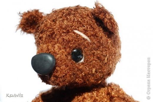 Доброе время суток! Под впечатлением от медвежат Евгении Аксеновой (http://bearsforpeople.blogspot.com) связался такой вот сладкоежка =) фото 3