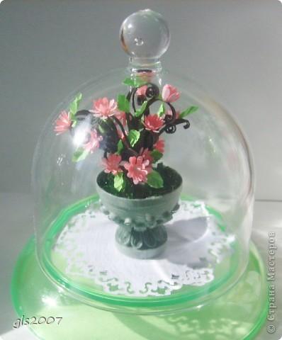 С благодарностью за вчерашнии комментарии. После добрых слов хочется сделать еще чего-нибудь и еще лучше :))) Сегодня скорее европейский парк - ваза с цветами неизвестного вида. фото 7