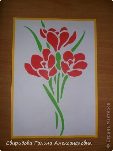 Мой цветник фото 1