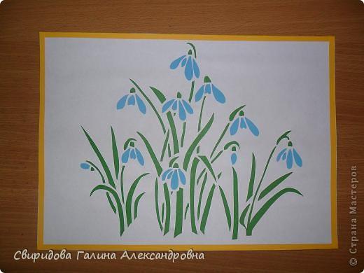 Мой цветник фото 9