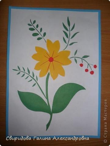Мой цветник фото 16