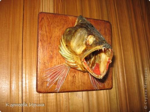 Таких рыб делает мой брат. Сначала солит потом придает форму и сушит фото 5
