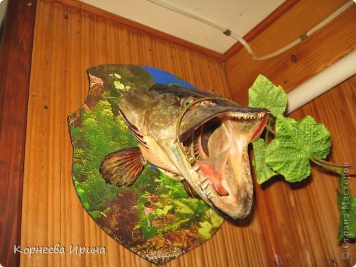Таких рыб делает мой брат. Сначала солит потом придает форму и сушит фото 4