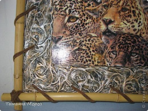 Вчера родился такой тигровый наборчик, а сегодня ушел в подарок хорошему человечку. фото 3