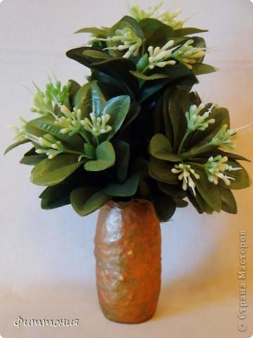 Как-то не могла найти мини вазочки для цветочков из пластики, пришла идея делать самой из бутылочек из-под молочных продуктов. Вазочки нашлись, а идея осталась. Решила попробовать. Вам судить, что получилось. Возможно, кто-то и воспользуется, хотя уверена, что идея не нова. Т.к. цель были вазочки, то букетики составляла из того, что было под рукой. Просто чтобы вазочки смотрелись повеселей. фото 16