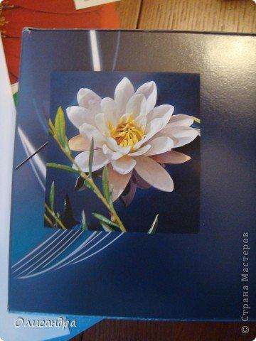 """Девочки! Как называется этот цветок? ******************************************* Окрыленная положительными отзывами, решила повторить свой эксперимент... и сделать еще одну открытку-стойку... Т.е. хотела ,просто, повторить то,что уже делала,но с другой картинкой... http://stranamasterov.ru/node/215641  Т.е. думать не хотелось, хотелось сделать быстренько... Но, кажется, быстренько я не умею...  Опять """"муки творчества"""" длились до середины ночи... фото 4"""