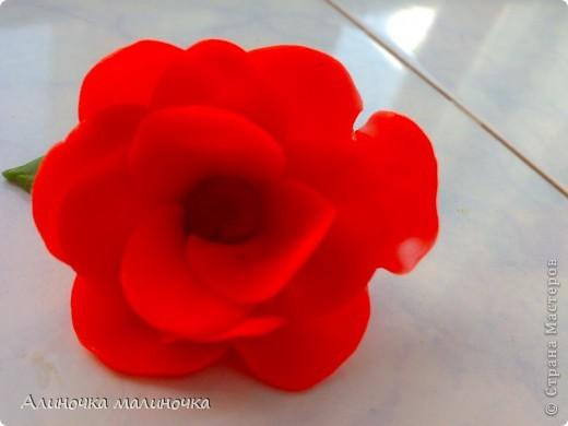 Вот такой вот цветочек я слепила из пластелина! фото 3