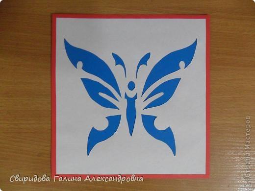 Бабочки, птицы фото 6