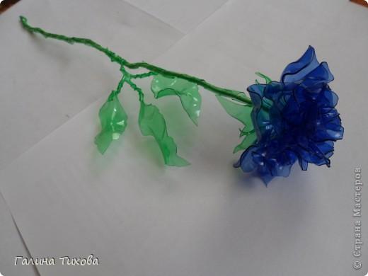 """Вот такие розы можно сделать из пластиковых бутылок. В """"Стране мастеров"""" уже есть мастер-класс по изготовлению таких роз.   фото 3"""