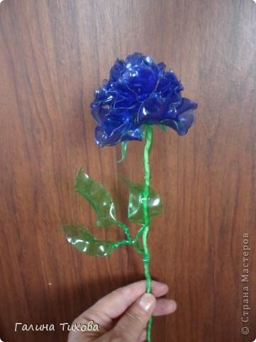 """Вот такие розы можно сделать из пластиковых бутылок. В """"Стране мастеров"""" уже есть мастер-класс по изготовлению таких роз. Но если кому-то интересно, как это делала я, то вы можете посмотреть это здесь: http://masterica.maxiwebsite.ru/archives/5882#more-5882 фото 4"""