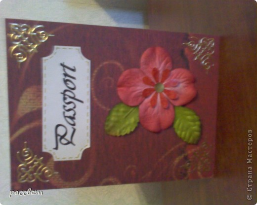 обложка на паспорт фото 3