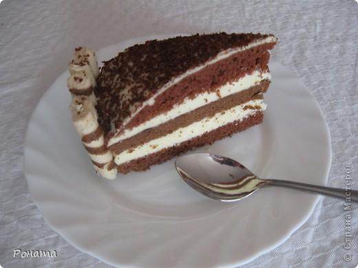 Всем привет! Сегодня, в свой день рождения, угощала гостей таким тортиком :) фото 3