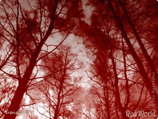 """""""Попались"""" Фотошоп заключается в выделении одного цвета. фото 3"""