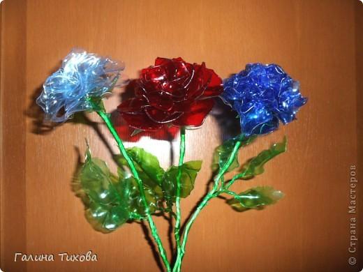 """Вот такие розы можно сделать из пластиковых бутылок. В """"Стране мастеров"""" уже есть мастер-класс по изготовлению таких роз. Но если кому-то интересно, как это делала я, то вы можете посмотреть это здесь: http://masterica.maxiwebsite.ru/archives/5882#more-5882 фото 1"""